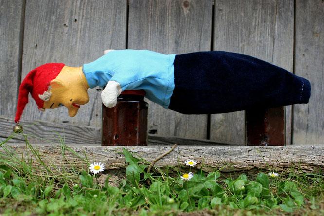 Kasperl beim Planking auf Powidl-Gläsern