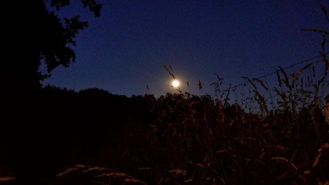 Vollmond. Jupiter. Venus, AincaArt, Ainca Kira, Foto und Text, Writer, Photographer, www.aincaart.ch, Quersatz,