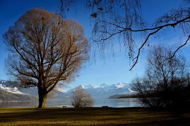 Thunersee, Bonstettenpark, Eiger, Mönch, JungfrauCopyright, AincaArt, Ainca Kira, Foto und Text, Writer, Photographer, Photography, Quersatz