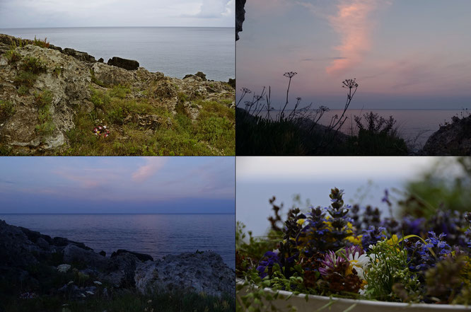 Copyright, AincaArt, Ainca Kira, Foto und Text, Writer, Photographer, Photography, Quersatz