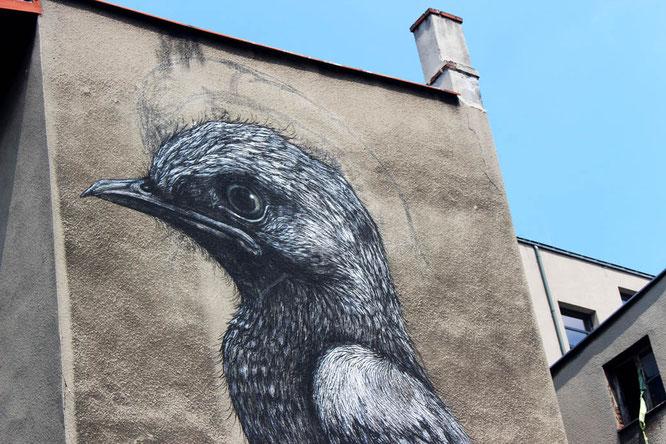 Street Art by ROA in Katowice