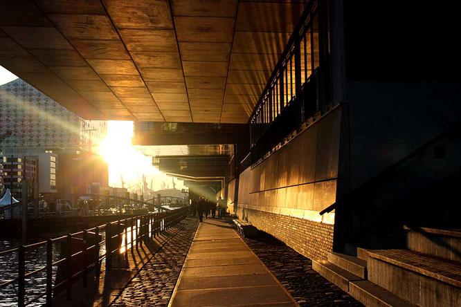 Hafen City at sunset