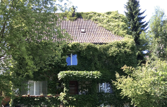 Eigenheim des Autors