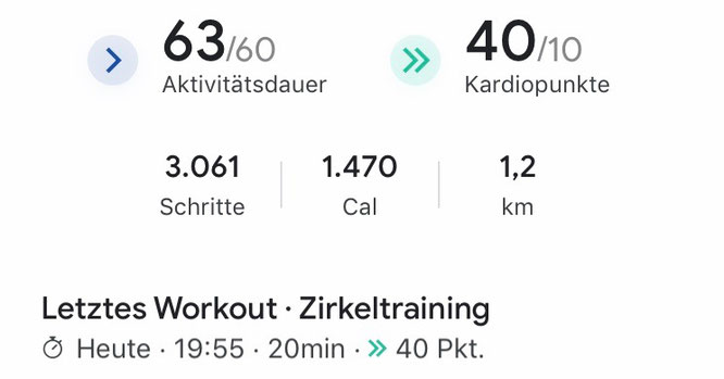 Screenshot Google Fit