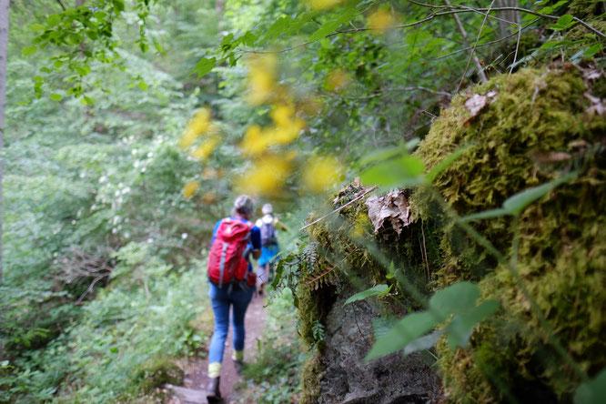 Wandern auf dem Eifelsteig (Foto: Michael Stock)