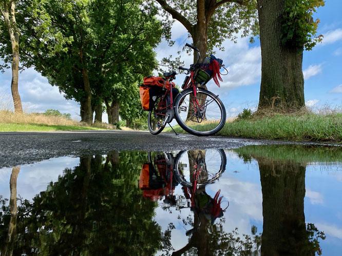Fahrrad steht auf einer Allee im Ruppiner Seenland, Mark Brandenburg, Spiegelung