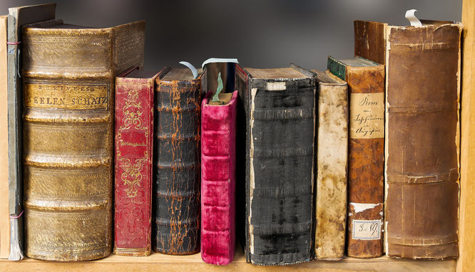 Ein Blick auf die Buchrücken mehrerer alter Bücher.