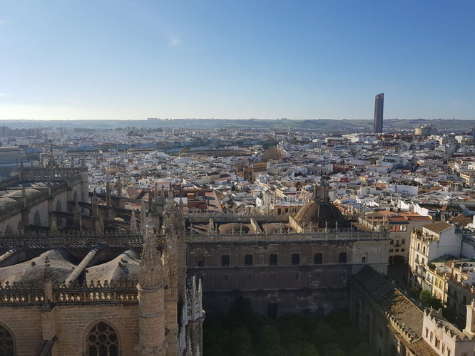 Seville from the Giralda. February 2019