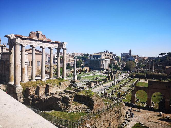 Roman Forum, March 2019