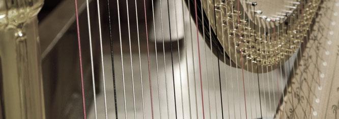 Klangforum Schweiz / Harfe