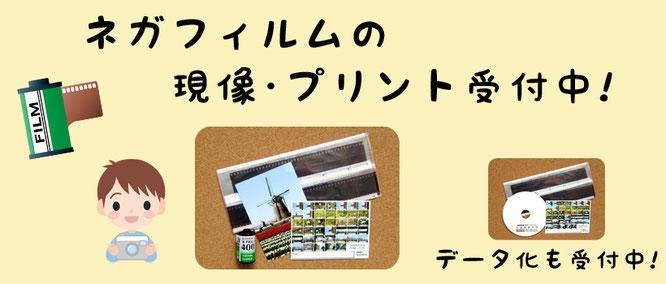 千葉県佐倉市のネガフィルムの現像、ネガ写真プリント