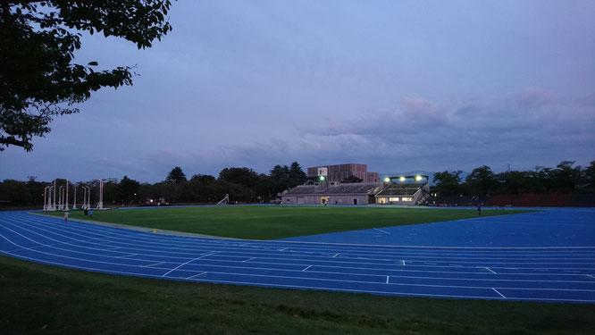 今日の高田城址公園陸上競技場。気が付くと夕刻を迎えていました(画像をクリックして拡大)