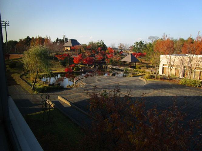 希望館2階からの景色。秋の深まりも最終章