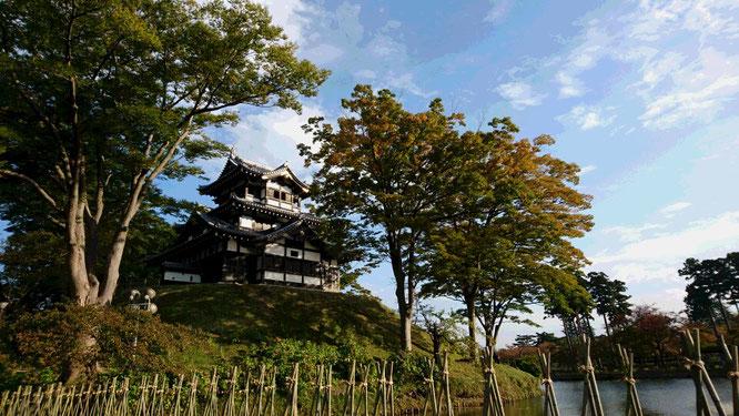 今日の高田城三重櫓。春同様、その控えめなところに愛おしさが感じられます