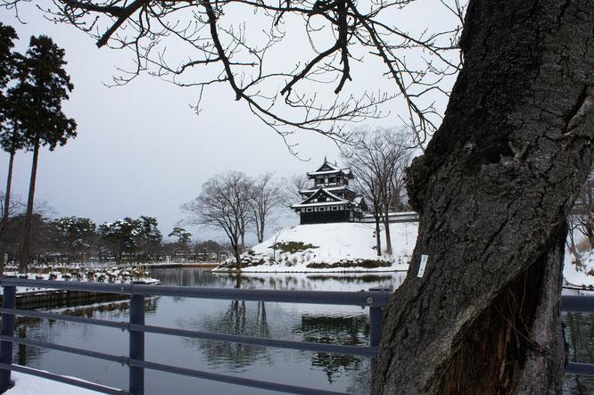 いつも控えめな高田城三重櫓。気がつけば、あとひと月半ほどで桜の開花を迎えます。