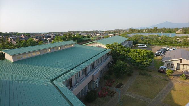 今日の夕刻。施設屋上からの眺め。緑に包まれるさいがたの杜(画像をクリックして拡大)