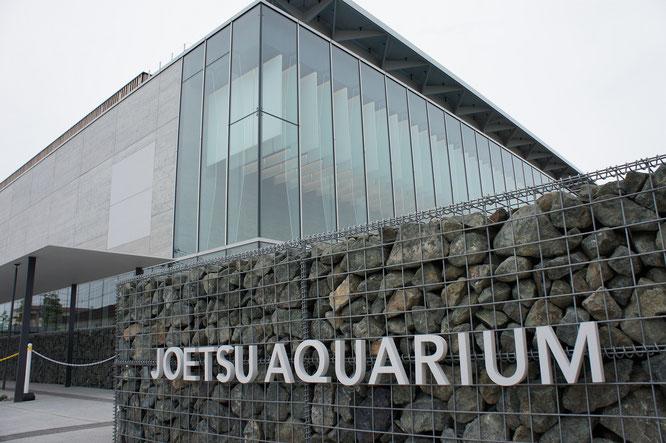 #上越市 #上越市立水族博物館 #うみがたり #グランド・オープン