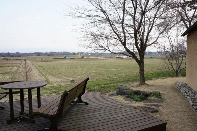 美術館の庭から、米どころの季節の移ろいを感じることもできます