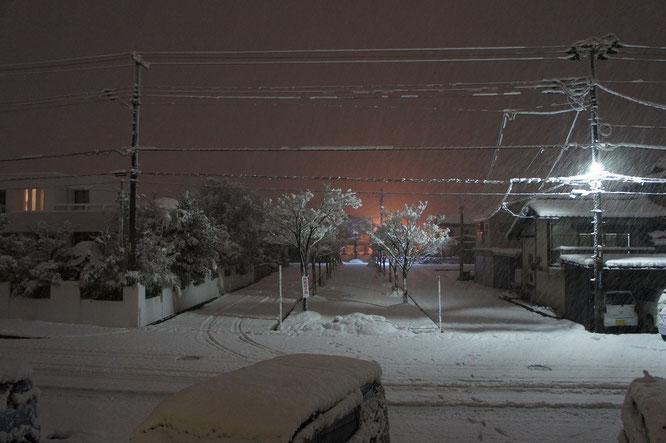 就寝前、外に目をやると雪がしんしんと降り積もってきました。直径1cmを超える「ぼた雪」。今夜は積もりそうです