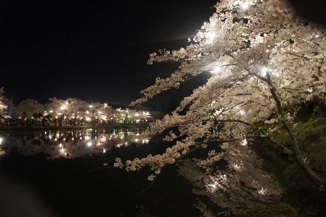 漆黒の夜空と内堀に挟まれた高田の桜。賑やかさのなかにも、おごそかな雰囲気が感じられました