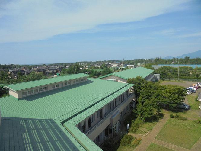 今日の午後、38.1℃を観測した上越市大潟区。屋上はまるで、サウナ風呂のようでした。