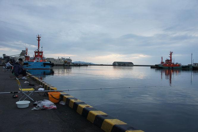 今日の夕刻の直江津港。のんびりとした光景に、心を整える。