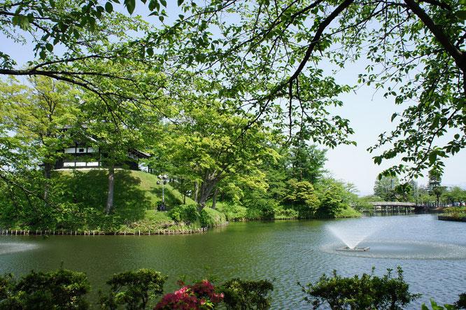新緑がまぶしい今日の高田公園。三重櫓も若葉に隠れています