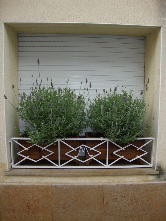 Jardineras de madera + lavanda