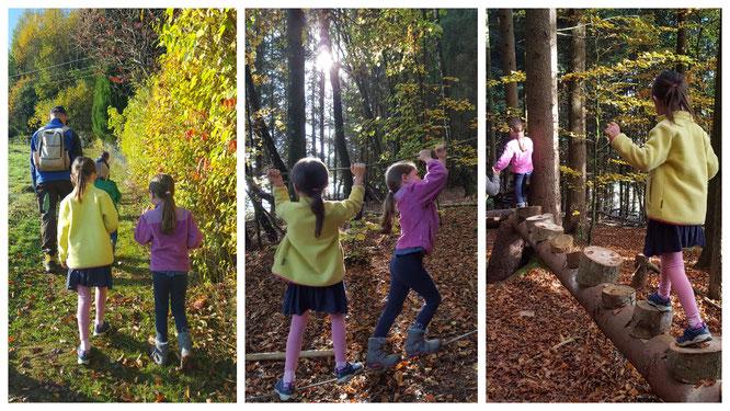 Mit Hermann geht es in den Abenteuerwald - einem Parcour aus allem, was die Natur bietet