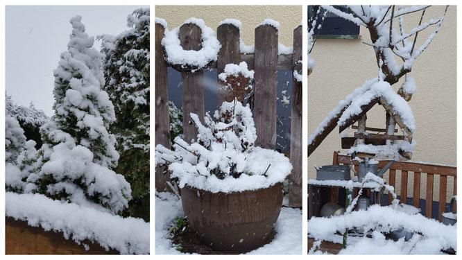 Winterliche Garten-Impressionen