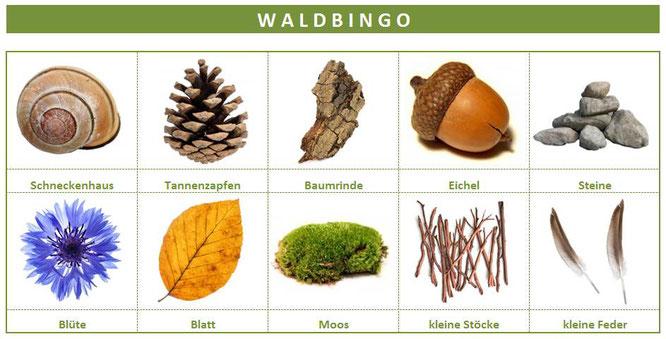 Unser fertiges Waldbingo