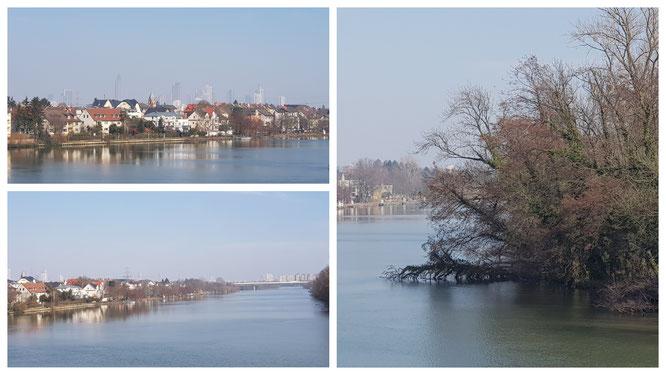 Blick von der Schleuse Griesheim in Frankfurt am Main