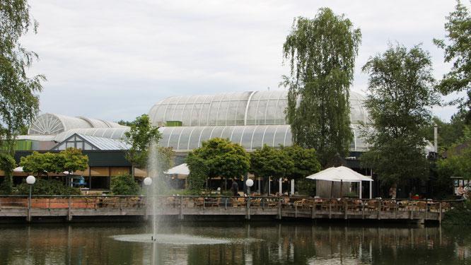 Blick auf den Market Dome im Centerparc Erperheide