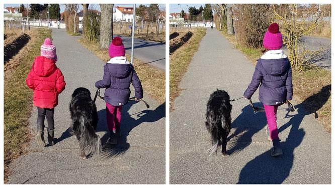 Wir gehen Gassi mit unserem Gasthund