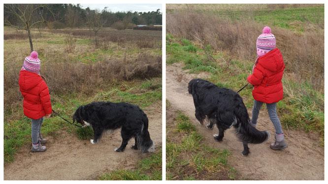 """Unsere Kleine führt unseren Gasthund """"Bine"""" an der Leine"""