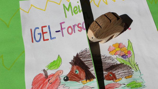 Das Igel-Forscherbuch unserer Großen mit einem Ostheimer Igel