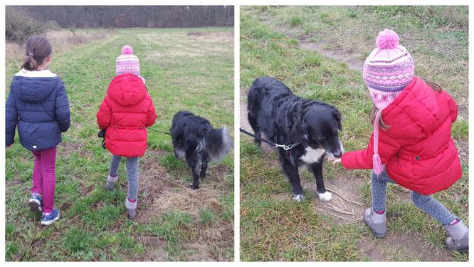 """Beim Spaziergang mit unserem Gasthund """"Bine"""""""
