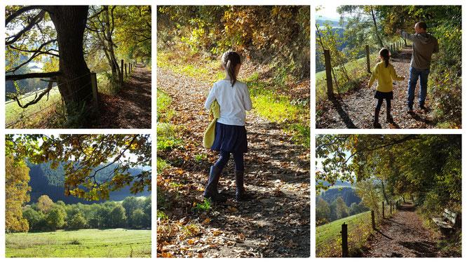 Unsere Große beim Spaziergang auf den Wegen rund um das Landhaus zur Ohe