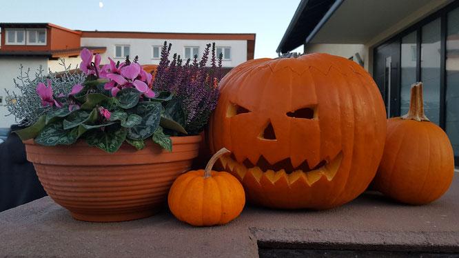 Halloween-Kürbis an unserem Eingang