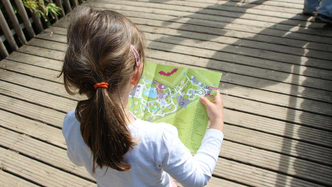 Unsere Kleine sucht mit einem Zooplan den richtigen Weg