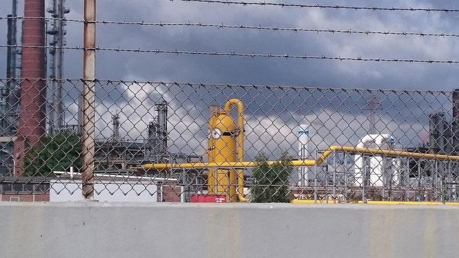 Im Hamburger Hafen: Minions hinter Gittern.