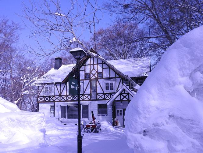 たんばら高原 たんばらスキーパーク・ラベンダーパーク隣りでのご宿泊は