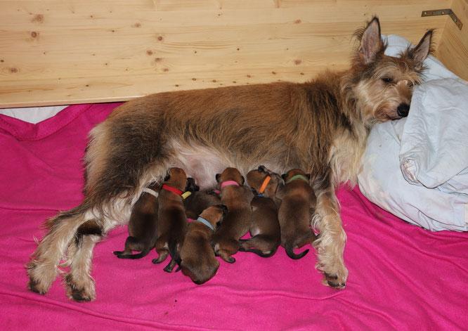 Mama Mona mit ihren 8 B-Kobolden