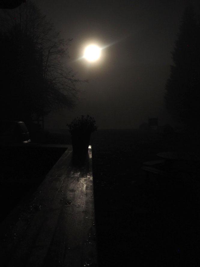 Belle ambiance nocturne hier soir dans le calme total de Freydières. Au dessus du bar extérieur de la Gélinotte la lune perce le brouillard et... annonce le retour du soleil ! On se prépare pour vous accueillir à nouveau, à très vite dans nos montagnes.