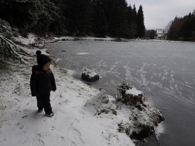 La neige arrive pour Noêl.... il y en a qui vont être contents (Et nous ausi !).  Bonnes fêtes à toutes et tous.  !