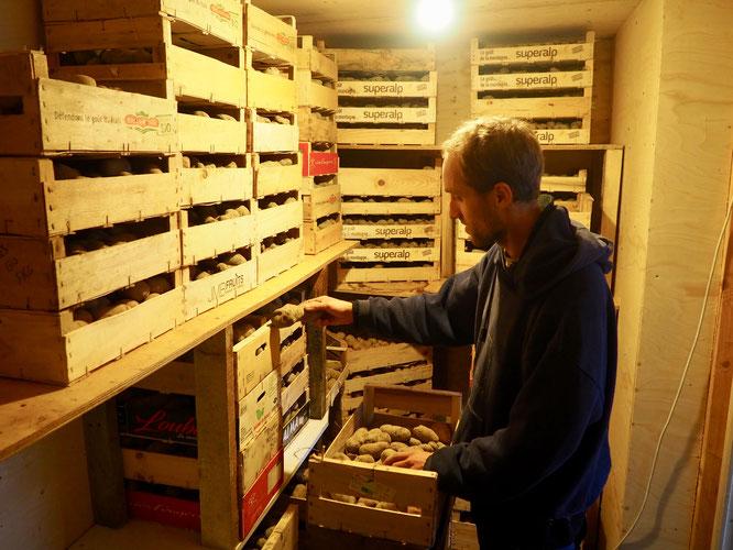 Un grand merci à Jean Noël Plauchu maraîcher bio à Montbonnot pour cette livraison. Des Pommes de Terre pour la cuisine de la Gélinotte. Et il va y en avoir pour tout l'hiver !