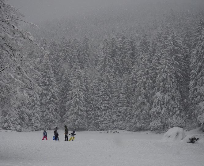 Un autre monde... hier après midi, il neige, une famille est sur les bords du lac gelé de Freydières. De petites expériences de vie fortes, marquantes et belles ! Une ouverture pour imaginer et ressentir, un peu, cette vie de la nature qui nous entoure...