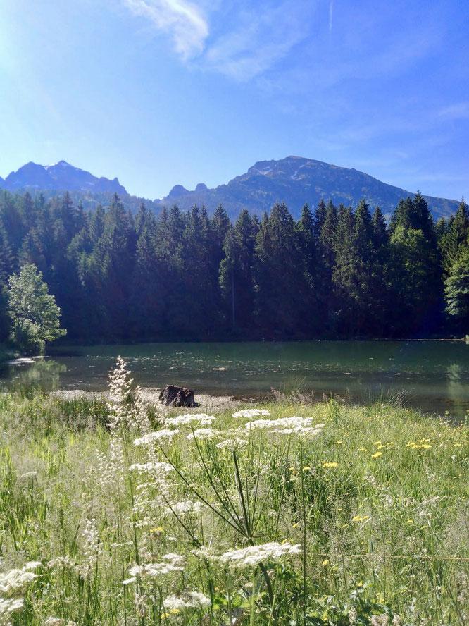 """Photo Mélanie Leloir : """"Un petit temps de calme au Lac de freydieres pour bien commencer cette semaine 😎😊"""" Merci."""
