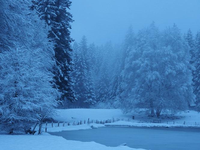 Superbe ambiance hivernale tôt ce matin à Freydières !