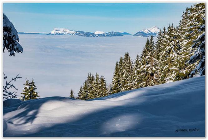 Depuis nos montagnes de Belledonne. La mer de nuages est quasi quotidienne en ce moment. Juste magnifique. Photo Laurent Dubois, merci.